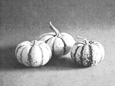 Photograph - Three Gourds by Frank Wilson