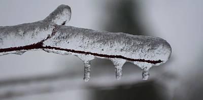 Photograph - Three  Ice Drops by Douglas Pike