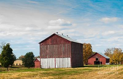 Art Print featuring the photograph Three In One Barns by Debbie Green