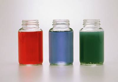 Red Cabbage Photograph - Three Jars Containing Red Cabbage Juice by Dorling Kindersley/uig