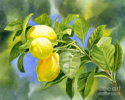 Lemon Painting - Three Lemons by Sharon Freeman