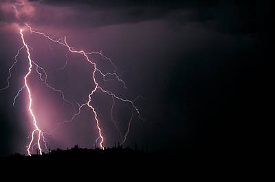 Striking Photograph - Three Lightning Strikes In The Sonoran by Thomas Wiewandt