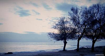 Sorrento Photograph - Three Lonely Trees by Gianluca Sommella