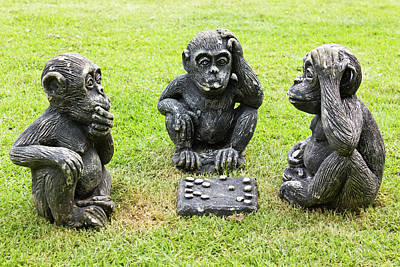 Three Monkeys Playing Checkers Art Print