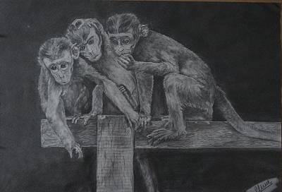 Cute Monkey Drawing - Three Monkeys by Vivek Pernamitta