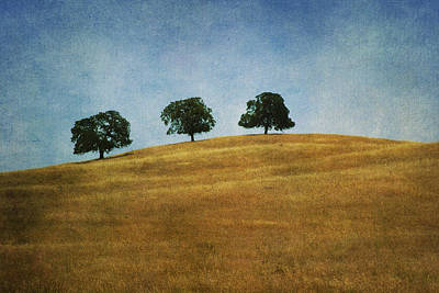 Three On A Hill Art Print