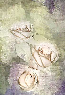 Three Pale Roses Art Print by Diane Schuster