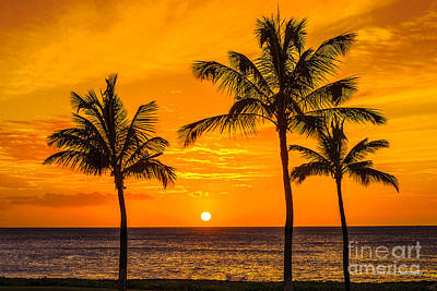 Three Palms Golden Sunset In Hawaii Art Print