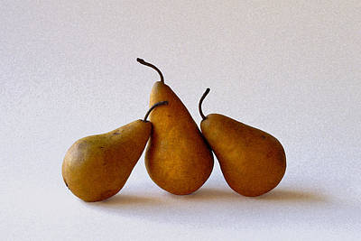 Photograph - Three Pears by Michael Moschogianis