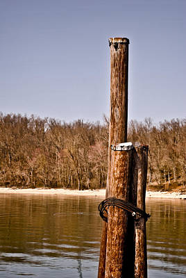 Photograph - Three Pilings by Greg Jackson