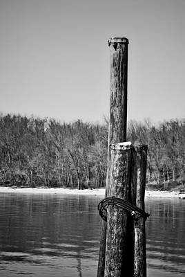 Photograph - Three Pilings In B/w by Greg Jackson