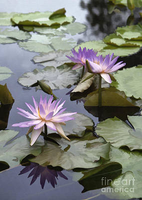 Photograph - Three Pink And Purple Lilies by Sharon Foster