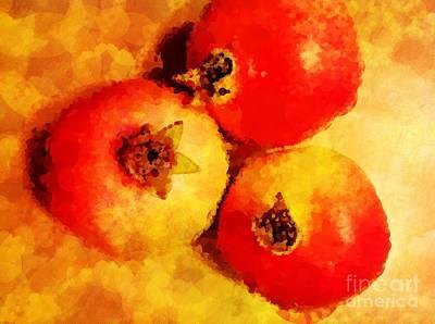 Three Pomegranates Art Print by Mary Machare