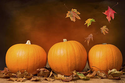 Brown Leaves Photograph - Three Pumpkins by Amanda Elwell