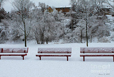 Photograph - Three Red Benches In The Snow by Nina Silver