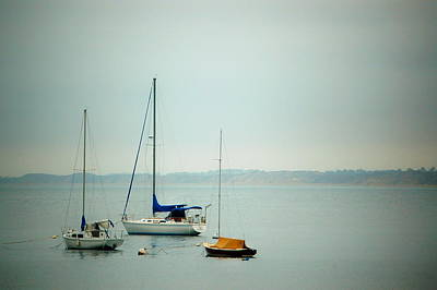 Photograph - Three Sailboats by Tamyra Crossley