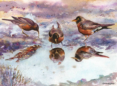 Three Thirsty Robins Art Print by Anne Gifford