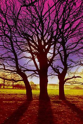 Art Print featuring the digital art Three Trees by David Davies