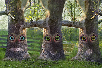 Books Digital Art - Three Trees by Betsy Knapp