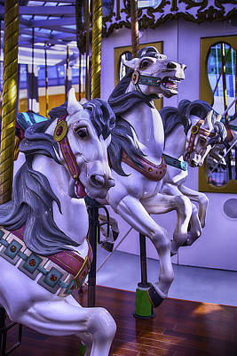 Antique Carousel Photograph - Three Wild Horses by Garry Gay