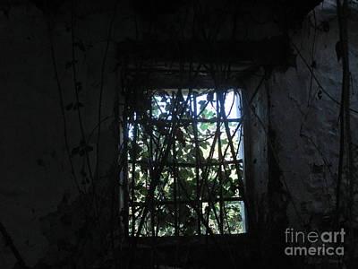 Photograph - Through - Casares by Chani Demuijlder