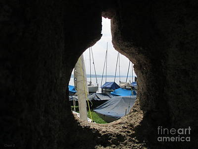 Photograph - Through - Feldafing by Chani Demuijlder
