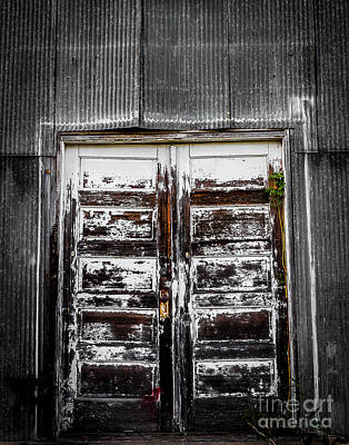 Photograph - Through The Doors by Ken Frischkorn