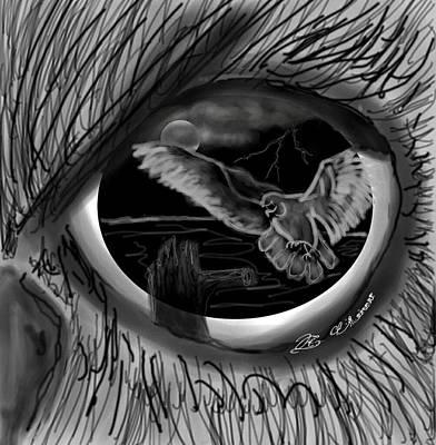 Through The Eye Of The Owl Art Print