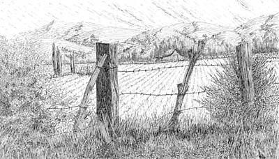 Drawing - Through The Fence by David King