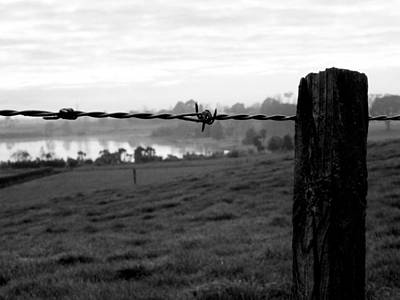 Photograph - Through The Fence by Guy Pettingell
