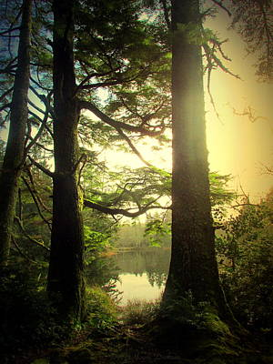 Photograph - Through The Forest To The Lake by Joyce Dickens