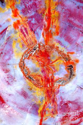 Through The Hoop Art Print by Douglas Taylor