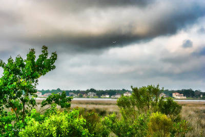 Photograph - Coastal - Marsh - Landscape - Through The Marsh by Barry Jones