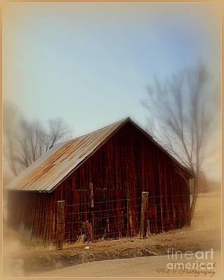 Photograph - Through The Mist by Bobbee Rickard