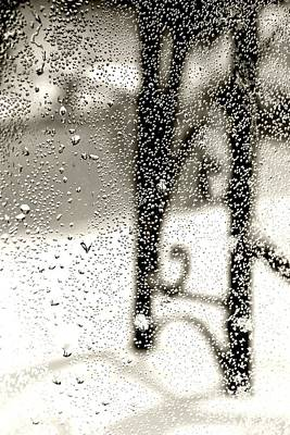 Photograph - Through The Raindrops by Bonnie Myszka