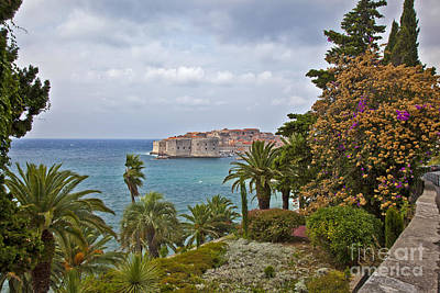 Dubrovnik Croatia Photograph - Through The Trees In Dubrovnik by Madeline Ellis