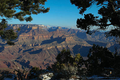 Grand Canyon Photograph - Through The Trees by Natural Focal Point Photography