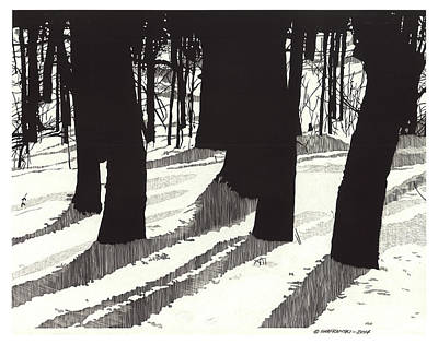 Wall Art - Drawing - Through The Trees by Paul Shafranski