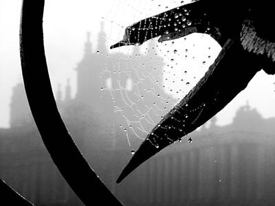 Through The Web Art Print by Meaghan Troup