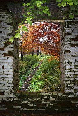 Through The Window Art Print by Debra and Dave Vanderlaan
