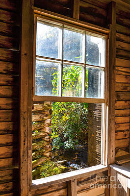 Photograph - Through The Window by Paul Mashburn