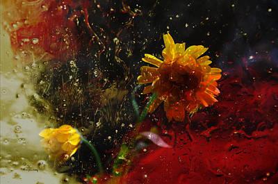 Photograph - Through The Window by Randi Grace Nilsberg
