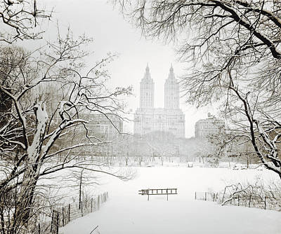 Winter Trees Photograph - Through Winter Trees - Central Park - New York City by Vivienne Gucwa