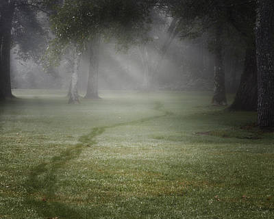 Photograph - Thru The Fog by Bill Wakeley