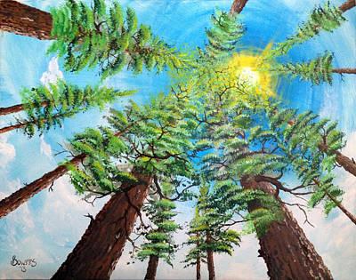 Thru The Pines Art Print by Jim Bowers