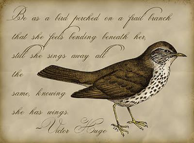 Sparrow Digital Art - Thrush Bird Wall Art by Christy Beckwith