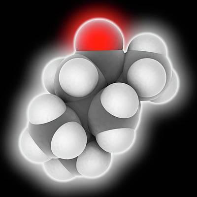 Thujone Molecule Art Print by Laguna Design