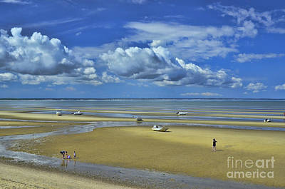 Photograph - Thumpertown Beach Lowtide by Allen Beatty