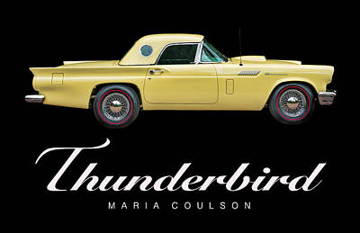 Photograph - Thundefbird by Maria Coulson