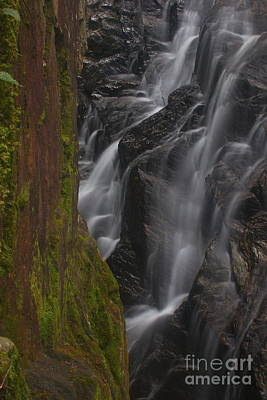 Photograph - Thundering Brook Falls Of Killington by Amazing Jules